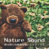 自然の中で眠る熊