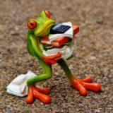 仕事を抱えるカエル